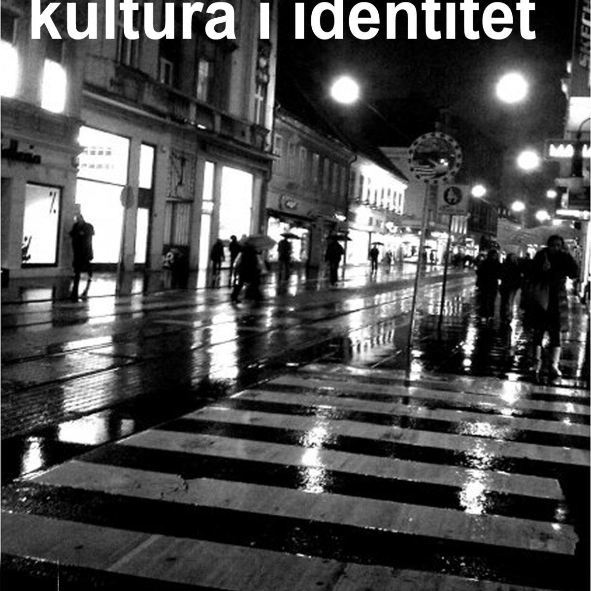 Vizualna kultura i identitet