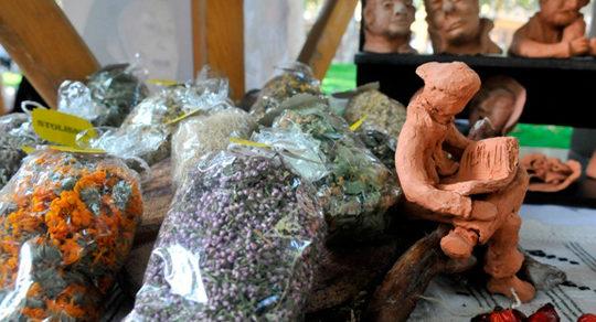 Izložba Keramika u svijetu bilja