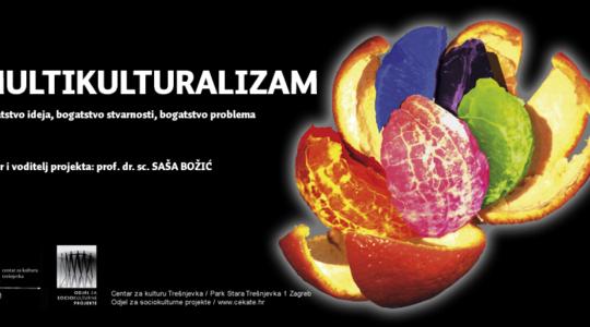 Multikulturalizam – bogatstvo ideja, stvarnosti i problema