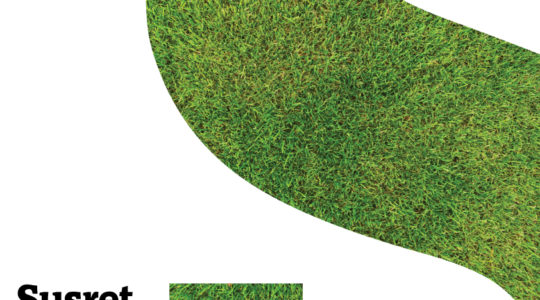 U Susret ljetu: Susret klapa u vrtu