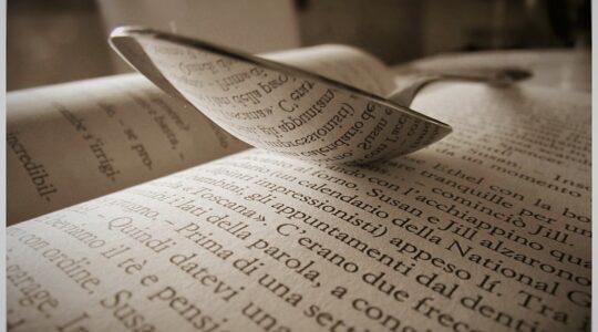 BIBLIOTERAPIJA ONLINE