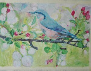 Upis /Start art / radionice crtanja i slikanja, početna i napredna