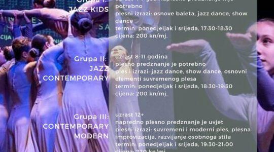 """Plesni studio """"CeKaTe"""" za djecu i mlade"""