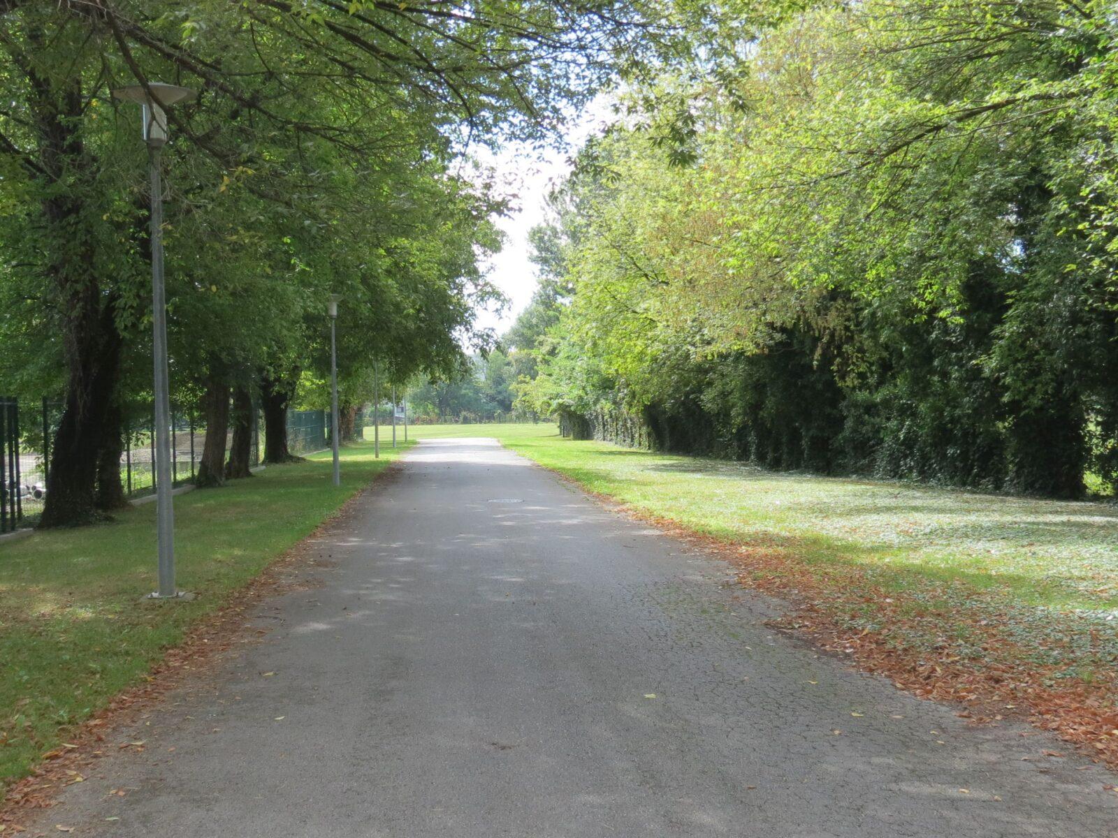 Besplatne šetnje za građanstvo